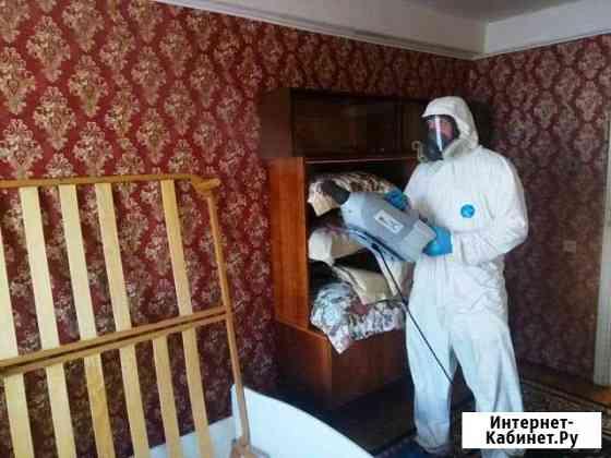 Уничтожение клопов, тараканов, муравьев, блох, мыш Екатеринбург