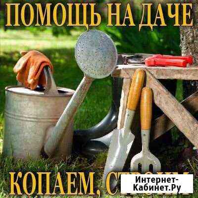 Уборка и расчистка участка Городец