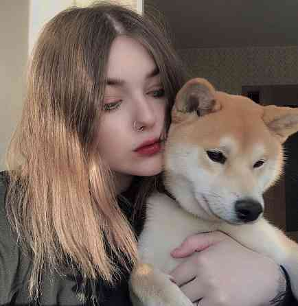 Передержка собак Санкт-Петербург