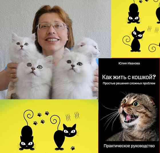 Бихевиорист. Специалист по коррекции поведения кошек Санкт-Петербург