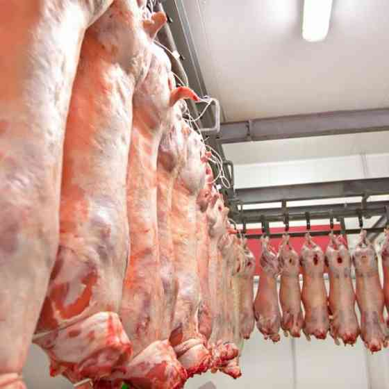 Производство и оптовые продажи мяса в ассортименте Москва