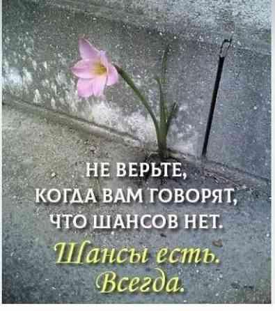 Помощь потерпевшим (пострадавшим) от преступлений в С-Петербурге Санкт-Петербург