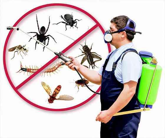 Товары для борьбы с насекомыми и грызунами Москва