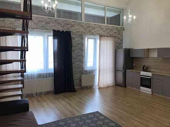 1-комнатная квартира, 50 м², 4/4 эт. Воронеж