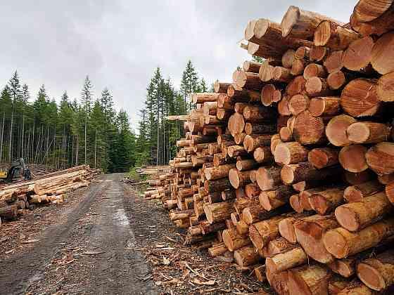 Продаем лес кругляк Красноярск